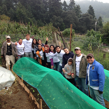 Principle Mexico - Helping Communities