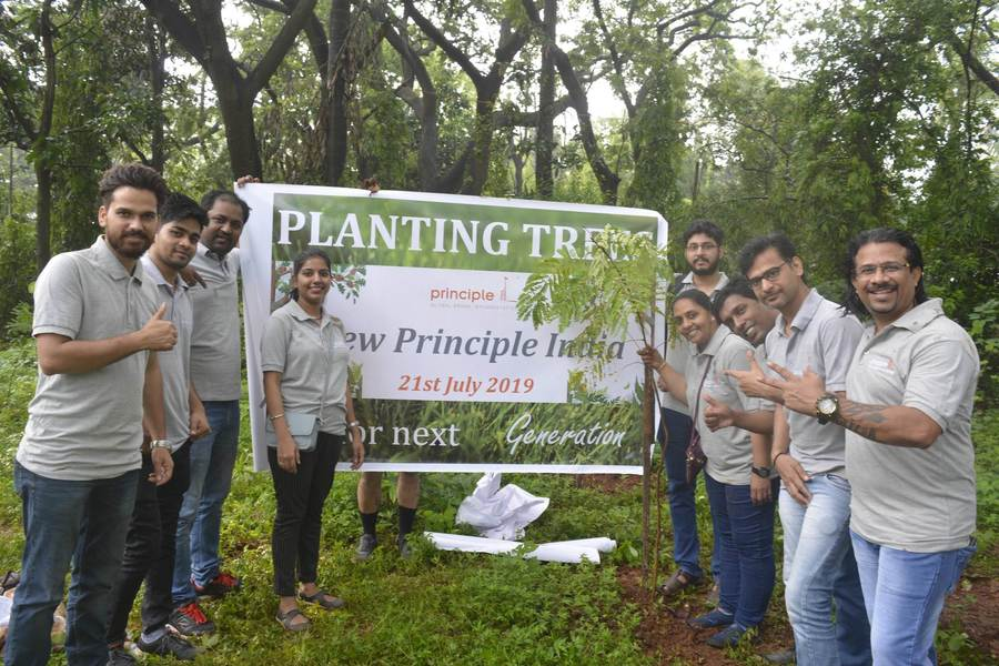 Principle Tree Plantation